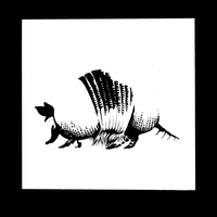 Armadillo: transposition by RenrookART
