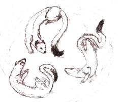 weasel, ermine and stoat by Rhahsid