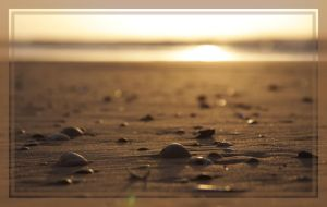 Shells sunset by Drummyralf