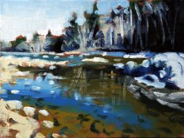 Ausable River Study by maccski