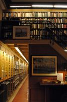 NY Library 11 by LucieG-Stock