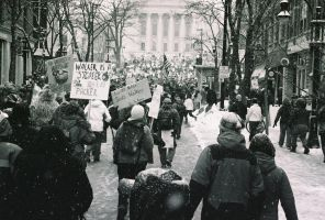 Walk for Your Rights by iamkeebler