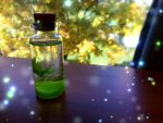 Bottle of Wishes by yuyinfeng