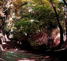 stone stairs++ by levynda