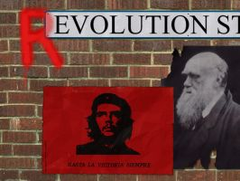 Evolution:Revolution by Hashassin