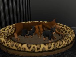 Puppies :D! by SuperCatScourge