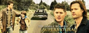 The family business (Banner for Timeline) by Nadin7Angel
