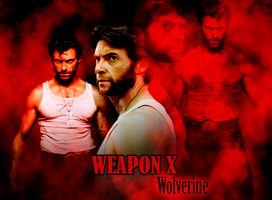 Weapon X : Wolverine by JeannieHowlett
