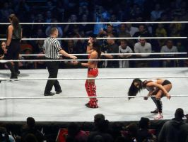 Brie, Nikki Bella vs. AJ Lee, Tamina Snuka by hososoki