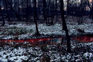 Bloody river by Arina1
