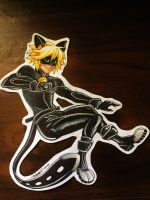 .: Chat Noir :. by Dreamgirl2007