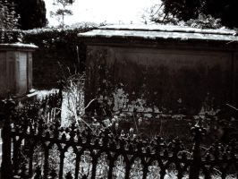 Old tomb stone by spiderkazz