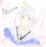 Prussia by italypizza25