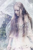 ~ Fairy realm ~ by Nilenna