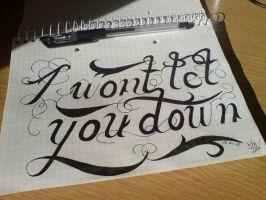 I won't let you down by demorfoza