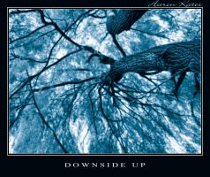 Downside Up by Storm-Boy