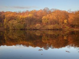 Reflect in pond of Villebon 2 - Autumn by yuushi01