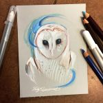 336- Mystic Barn Owl by Lucky978