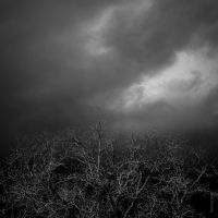 Winter Blues by tholang