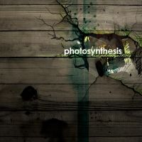 photosynthesis by DesignersJunior