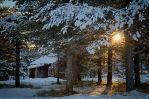 Cabin in the Woods by scwl