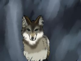 Wolf Realism by Eveningkitteh225