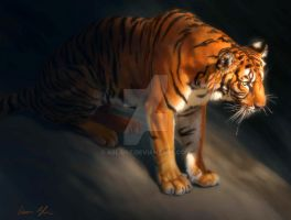 Torch Tiger 1 by ablaise