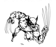 Wolverine by GibsonQuarter27