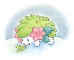 Shaymin - There is Life by Porcubird
