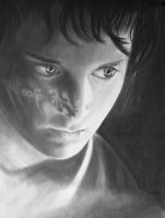Elijah Wood Portrait by haydenhammond