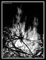 Ghosts In The Fire by BreeSpawn