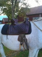 Medieval saddle on horse by Kristiantyrann