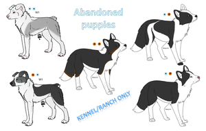 --OPEN--2 LEFT!!Story Abandoned puppies by AixaRawr