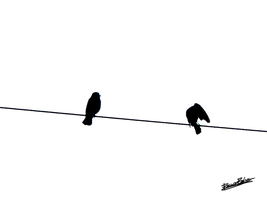 Birds on Power Line 1 by skinsvideos21