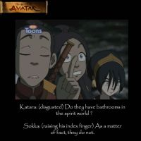 Sokka's experience... by alement