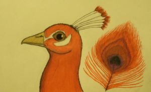 Red Peacock by Thylacine333