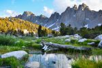 Kearsarge Meadow by BuuckPhotography