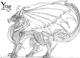 ...::Yragn: Full Body Profile::... by The-MuseDragon