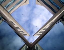 Free as a bird by T1sup