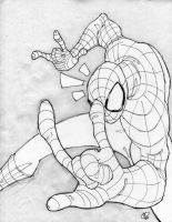Spider-man sketcha by NICKOLAI-IVAN-KILIN