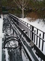 Benches in Snow by Monkpengossum