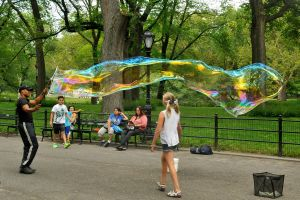 Central Park bubble 1 by wildplaces