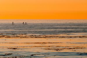Paddling North by isotophoto