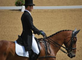 Dressage 38 by equinestudios
