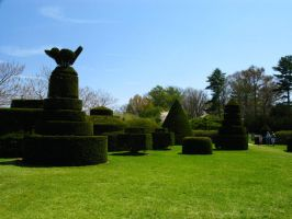 Topiary Garden by bean-stock
