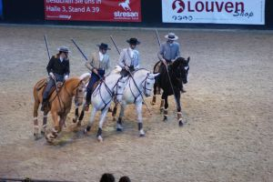 Lusitano Horses circle canter by EndingStories