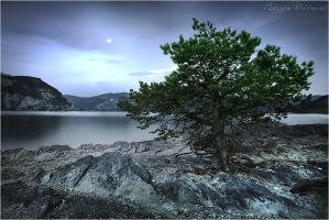 Listening to the moon... by Philippe-Albanel
