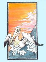 Pelican by scumbugg