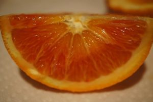 Blood Orange Stock 3 by terrestri-stockz