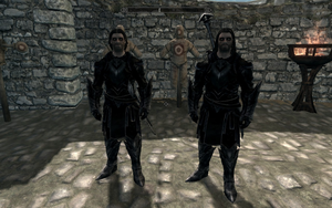 Farkas 'n Vilkas in Ebony Mail Armour by Mediziner